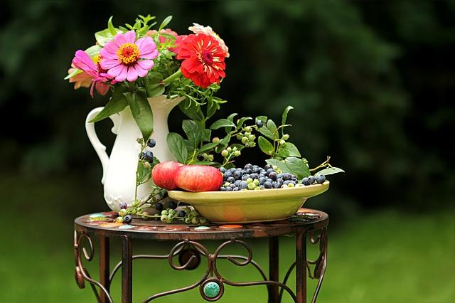 usługi ogrodnicze warszawa