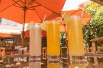 Smaczne, tanie i zdrowe napoje roślinne dostępne w wielu sklepach – opcją dla tradycji.